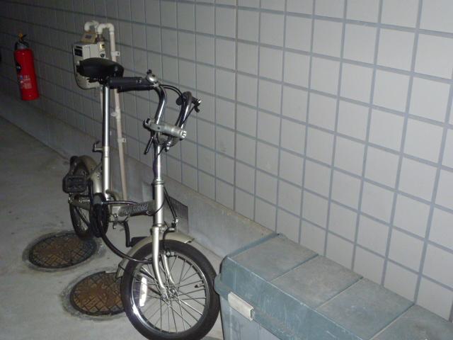 P1000037